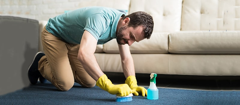 Deep Clean Carpet Without A Machine
